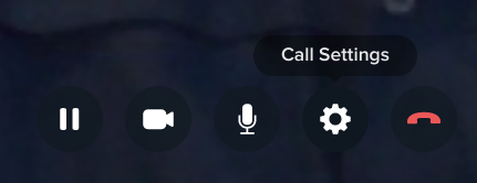 The Call Settings icon